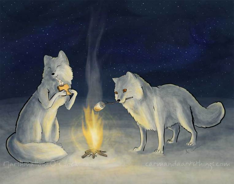 Arctic-Foxes-Eating-Smores